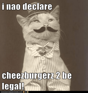 i nao declare  cheezburgerz 2 be legal!