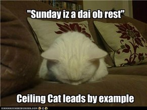 So Sayeth Ceiling Cat