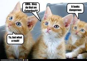 OMG.  they do that on Caturday??