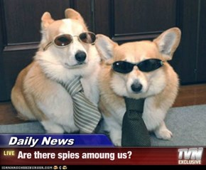 Daily News - Are there spies amoung us?