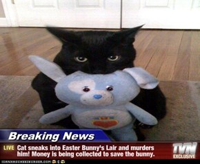 Breaking News - Cat sneaks into Easter Bunny's Lair and murders him! Money is being collected to save the bunny.