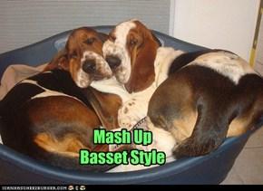 Mash Up Basset Style