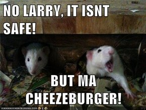 NO LARRY, IT ISNT SAFE!  BUT MA CHEEZEBURGER!