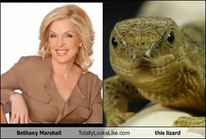 Bethany Marshall Totally Looks Like this lizard