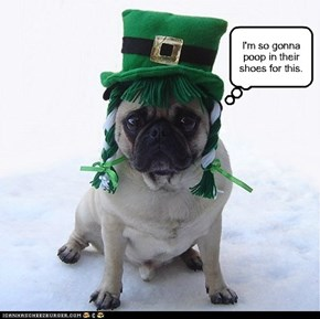 Happy Saint Patrick's Day.