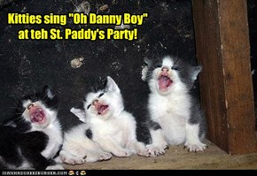 "Kitties sing ""Oh Danny Boy"" at teh St. Paddy's Party!"