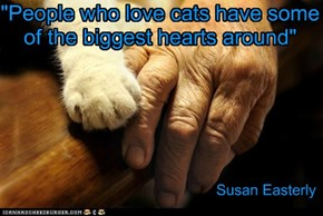 """""""People who love cats have some of the biggest hearts around"""""""
