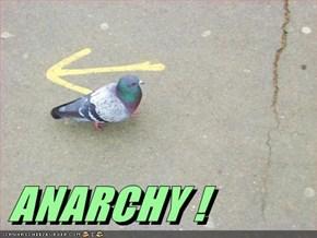 ANARCHY!