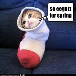 so eegurz fur spring