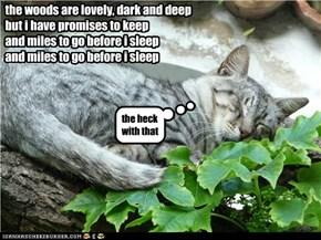 is naptime