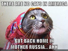 THERE ARE NO CATS IN AMERICA  BUT BACK HOME IN                  MOTHER RUSSIA... AHH