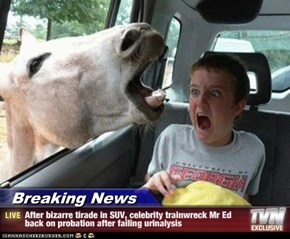 Breaking News - After bizarre tirade in SUV, celebrity trainwreck Mr Ed back on probation after failing urinalysis