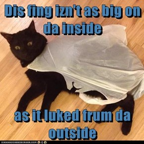 Dis fing izn't as big on da inside  as it luked frum da outside