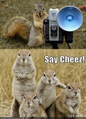 Say Cheez!