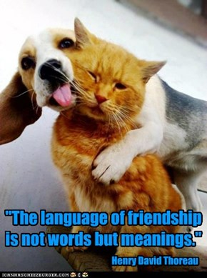 """The language of friendship is not words but meanings."""