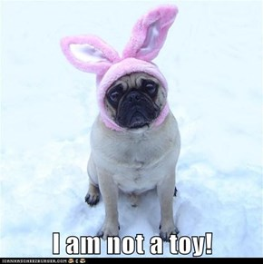I am not a toy!
