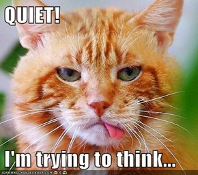 QUIET!  I'm trying to think...