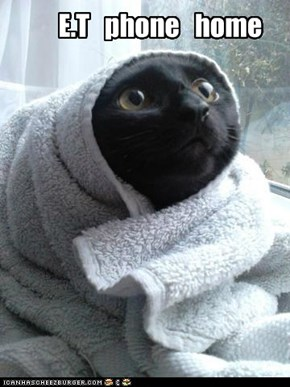 E.T cat version!!