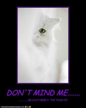 DON'T MIND ME.......