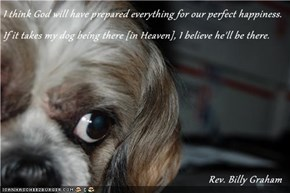 I think God will have prepared everything for our perfect happiness. If it takes my dog being there [in Heaven], I believe he'll be there.                                                                                Rev. Billy Graham