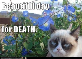 Beautiful day for DEATH.