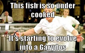 This fish is so under cooked   It's starting to evolve into a Garydos