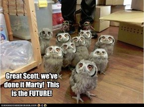 Owls Can't Comprehend the Magic of the Future