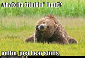 Thoughtful Bear is Thoughtful