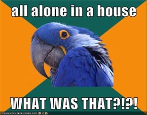 all alone in a house  WHAT WAS THAT?!?!