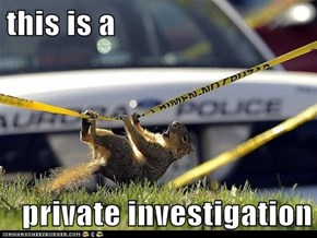 this is a  private investigation