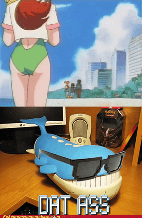 Wailord stahp