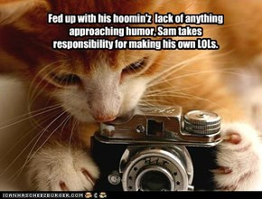 Fed up with his hoomin'z  lack of anything approaching humor, Sam takes responsibility for making his own LOLs.