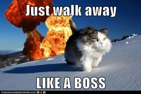 Just walk away  LIKE A BOSS