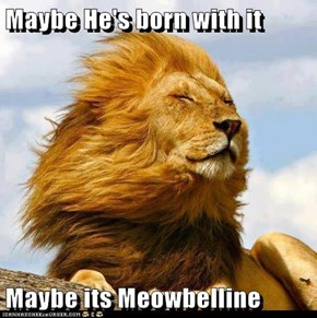 Maybe He's born with it  Maybe its Meowbelline