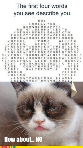 Grumpy, Cat, No, and Go Die