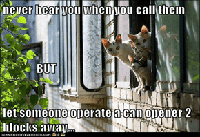never hear you when you call them               BUT let someone operate a can opener 2 blocks away...