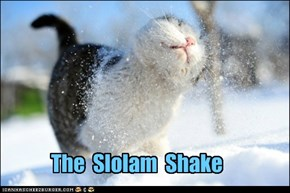 The  Slolam  Shake