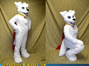 Krypto fursuit
