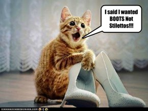 I said I wanted BOOTS Not Stilettos!!!