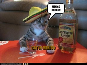 MEXICANS TO BLAME!!!