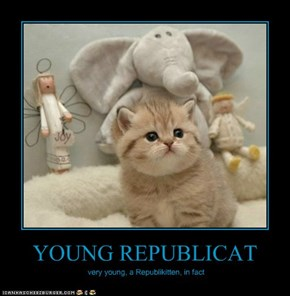 YOUNG REPUBLICAT