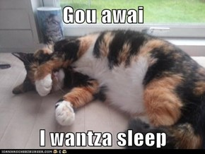 Gou awai  I wantza sleep