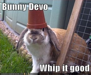 Bunny Devo  Whip it good