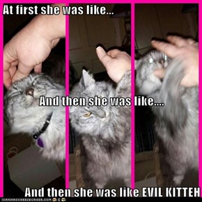 At first she was like... And then she was like.... And then she was like EVIL KITTEH