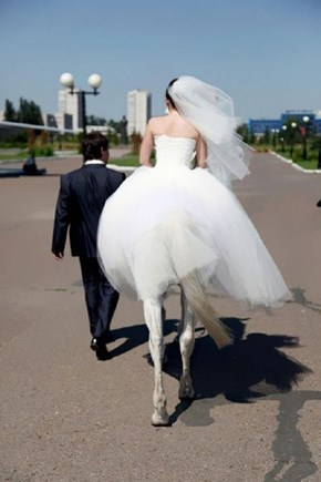 I Now Pronounce You Man and Centaur