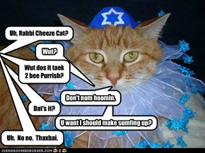 Rabbi Cheeze Cat does not complicate the simple.