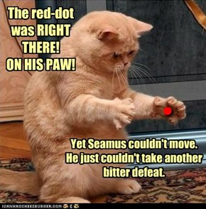 Finally diagnosed with PTSD, Seamus is said to be 'resting' in a clinic outside of Pittsburg.