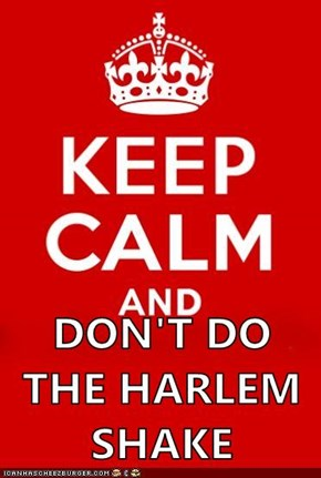 DON'T DO THE HARLEM SHAKE