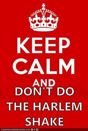 DON'T DO THE HARLEM SHAKE