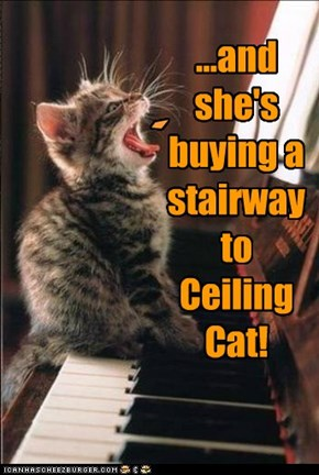 ...and she's buying a stairway to Ceiling Cat!